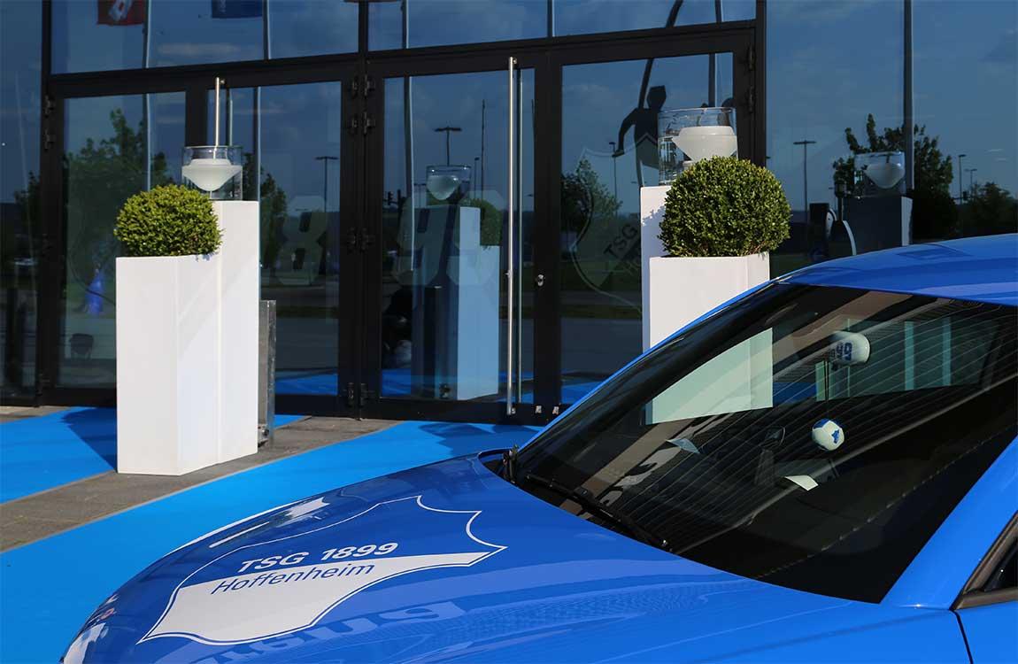 Eingang mit Pflanzenstelen und blauem Teppich