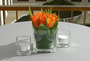 Frische Farben in Glaskubus – Tischdekoration Hafenwerk