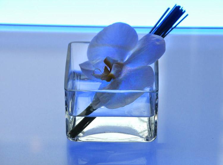 Eckiges Glas mit Blüte