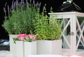 Floristen Sommerlaune Outdoor & Sommerfest Hafenwerk